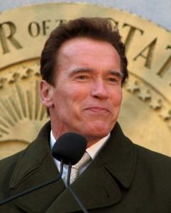 Arnold Schwarzenegger tax