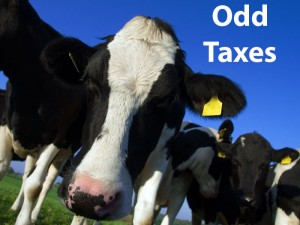 odd taxes Fouts law group tax solutions
