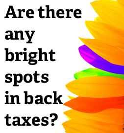 Five tactics to reduce or pay off your IRS back taxes
